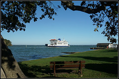 St.Faith (Jason 87030) Tags: faith ferry wightlink devotion song tree trunk bench wooden frame compostion water sea october 2018 island isle wight iow holiday sunny autumn solent portsmouth branches leaves uk england transport ship boat ferries roro