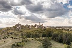 _DSF0899-2 (Kornelka, Natalka oraz Wiktor) Tags: olsztyn zamek olsztynie juromania 2018 castle
