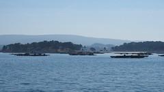M2109121 E-M1ii 40mm iso200 f5.6 1_1600s 0.3 (Mel Stephens) Tags: galicia holiday o grove spain 20180910 201809 2018 q3 16x9 wide widescreen olympus mzuiko mft microfourthirds m43 1240mm pro omd em1ii ii mirrorless coast coastal seascape structure