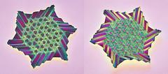 Autumn (Marjan Smeijsters) (De Rode Olifant) Tags: marjansmeijsters origami tessellation autumn paper paperart hexagon triangle papiroflexia pattern geometry