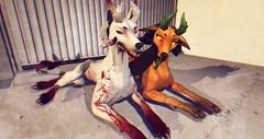 [SC] Hellhund Bloody Boi + Pupkin (Sugarlat [SC]) Tags: secondlife product mod