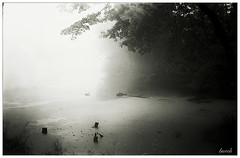 The Cove in Fog (JourneysEnd1750) Tags: rolfix mediumformat fog weather 120film fujifilm acros100 film analog caffenol landscape mist lake franka 6x9