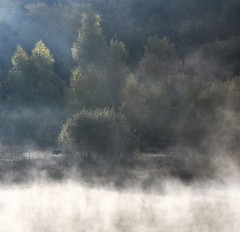 Fairies´ land (:Linda:) Tags: germany thuringia village bürden pond tree mit