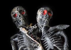 Trick or treat (LSydney) Tags: macromondays trickortreat macro skeletons
