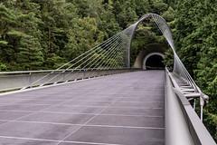 AGQ-20180927-0024 (AGQue) Tags: 2018 asia autumn fall gmt0900tokyostandardtimezone japan koka september shigaprefecture travelphotography bridge museum suspensionbridge tunnel vacationing kokashi jp