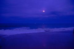 Blue Moonlight (SueZinVT) Tags: blue nausetlightbeach beach capecod suezamecnik sunset sky