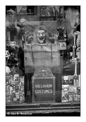 Hallowe'en Countdown (jbhthescots) Tags: 250mmsummicronv5 bwyellowfilter glasgow ilfordfp4200 ilfordid111115min leicam6classic plustek7600i sekonicl308s vuescan