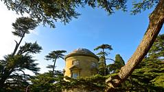 THE ROTUNDA (chris .p) Tags: croome park worcestershire nikon d610 rotunda autumn 2018 capture nt nationaltrust trees september wideangle tree england uk building