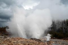 Steamboat Geyser (San Francisco Gal) Tags: steamboatgeyser norrisgeyserbasin yellowstonenationalpark geyser steam water rock ghost
