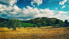 Tuscan countryside (Enrico Cusinatti) Tags: albero alberi clouds cielo enricocusinatti italy italia landscape nuvole natura sky travel toscana tuscany viaggi vacation vacanze vegetazione