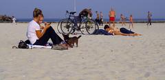 (TheDeepestPurple+) Tags: 2018 pentax pentaxart q7 515mm smcpentaxf2845515mmedalif odessa outdoor autumn blacksea sea beach people dog