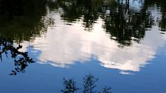 Blau/Weiß - Der Himmel über Bayern (seyf\ART) Tags: macro nahaufnahmen natur nature water wasser zenithelios44