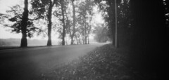 (o) (Piotr Skiba) Tags: pinhole siemianowice śląskie film bw fomapan400 noon morning landscape asphalt road lantern trees