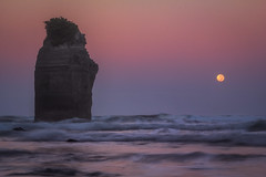 Moonset/sunrise at Three Sisters Beach NZ (Luc Stadnik) Tags: moon moonset nz newzeanland newplymouth tasmansea waves ocean sea stone morning nature power treesisters beach