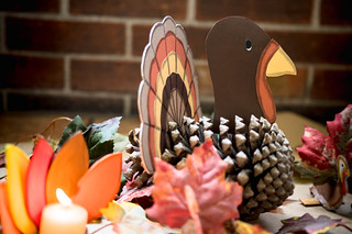Turkey made with a pine cone