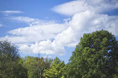 Just A Beautiful Day In The Neighborhood (Modkuse) Tags: landscape nature natural clouds sky trees cloudscape cloudy cloudyday fujifilm fujifilmxt2 xt2 xf35mmf2rwr fujinon fujinonxf35mmf2rwr