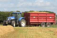 New Holland T6070 Tractor with a Lynch Trailers Grain Trailer (Shane Casey CK25) Tags: new holland t6070 tractor lynch trailers grain trailer nh cnh blue newholland traktor traktori tracteur trekker trator ciągnik harvest grain2018 grain18 harvest2018 harvest18 corn2018 corn crop tillage crops cereal cereals golden straw dust chaff county cork ireland irish farm farmer farming agri agriculture contractor field ground soil earth work working horse power horsepower hp pull pulling cut cutting knife blade blades machine machinery collect collecting nikon d7200