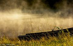 Golden morning (FotoRoar2013) Tags: 2018 fotoroar2013 canon 5dmk3 fog boat moody mystery mist atmosfære atmosphere atmosfera atmosphère autumn acqua beauty båt dråper norway norwegen noruega norge norvegia nature natur norwege norvege farger