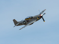 'Contrary Mary' (davepickettphotographer) Tags: contrarymary mustang p51 american fighter oldwarden bedfordshire biggleswade aircraft aviation uk theshuttleworthcollectionuk shuttleworthcollection duxford based vintage secondworldwar park airshow