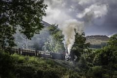 Full Steam Ahead (Matts__Pics) Tags: steamlocomotive welshhighlandrailway rhydddu beddgelert mountains greenvalleys