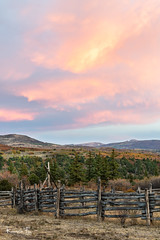 Cowboy Fence (Wisconsin Fox) Tags: colorado sunrise morningsky mountains forrest fence cowboy nikon d850 lightroom ouray color