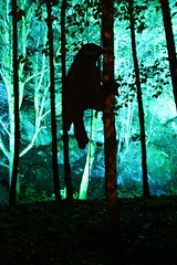 2018 - 4.10.18 Enchanted Forest (120) (marie137) Tags: forest lights trees show marie137 bright colourful pitlochry treeman attraction visit entertainment music outdoors sculptures wicker food drink family people water animation