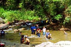"Songkram Celebrations. (ol'pete) Tags: chiangmai thailand family holdays songkran newyear leisure picnics cool water ประเทศไทย เมืองไทย สงกรานต์ แม่น้ำ river น้ำตกแม่กลาง ""maeklangwaterfall"" ครอบครัว ""doiintanonnationalpark""อุทยานแท่งชาติดอยอินทนนท์ เชียงใหม่ เมษายน april"