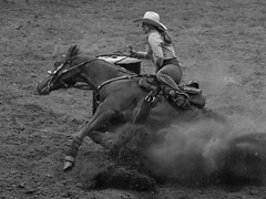 Going Down (tvdflickr) Tags: rodeo georgia cobbcounty barrelracing horse rider cowgirl arena dirt ring fall falling nikon d850 nikond850 photobytomdriggers thomasdriggersphotography tvdimages