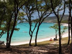 P1000935.jpg (cédricpeltier) Tags: voyage paysage plage rodrigues forêt bateau océan