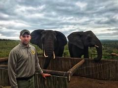 IMG-20181012-WA0001 (NYS Department of Environmental Conservation) Tags: dle encon beci dec nysdec africatrip southafrica elephants poaching ivory csi forensictraining wtf wildtomorrowfund ukewelaforeverwildreserve rambotheelephant elephantrescue