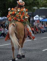 The Tail End (Scott 97006) Tags: parade rider woman horse pretty beauty flowers people ride tail