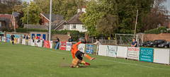 Spalding United (nonleaguepap) Tags: spalding united carlton town lincolnshire nottinghamshire non league day evo stik saturday october 2018 football blue sky green grass pitch field yellow gold shorts shirts boots action orange black tackle challenge