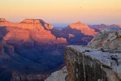 Grand Canyon (ncs1984) Tags: grandcanyon grand canyon arizona usa america southwest nature rocks canon 6d canon6d travel sunset dusk color colour