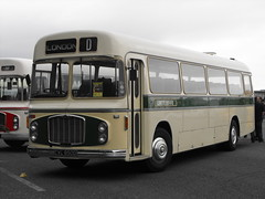 1431 CVL 850D, Bristol RE, ECW Body, 1966 (t.2018) (Andy Reeve-Smith) Tags: 1431 cvl850d 1966 re coach express bristol ecw ecwbody doningtonpark donington castledonington derbyshire derbys leicestershire leics lincolnshire roadcar lincolnshireroadcar lincs