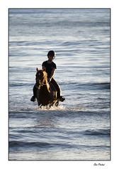 Le bain du soir (Rémi Marchand) Tags: cheval equitation cavalière canon7d