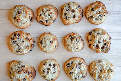 2018.10.21 Low Carbohydrate Chocolate Chip Cookies, Washington, DC USA 06721