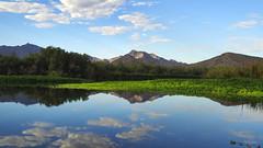 Nature's Canvas (VGPhotoz) Tags: vgphotoz mountains lake pond reflection usa nature natural artisticphotography arizona photography panorama colors canvas naturepics