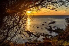 Cuando sale el sol... (Antonio Camelo) Tags: nikon sol sunrise amanecer amarillo rock roca sky cielo mar sea