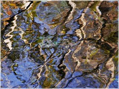 ([JBR]) Tags: eau agua water exposure longexposure reflet reflect reflejo reflexo bleu blue jbr jbrphotography tree arbol arvore river riviere rio gard salendrinque lasalle 30 555 autumn automne otono nature naturaleza naturallight daylight naturaldaylight pentax
