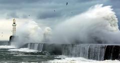 Storm (PeskyMesky) Tags: aberdeen aberdeenharbour southbreakwater storm wave scotland water