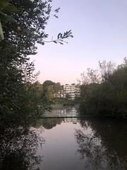 Sunday morning 6am (marc.barrot) Tags: pond dawn serene pale hampstead heath london nw3 uk landscape reflection