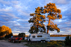 Beautiful Campsite (Buck--Fever) Tags: ashurstlake flowers arizona arizonaskies arizonapassages trees pinetree camping landscape nature outdoors mogollonrim