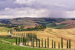 near Siena - Tuscany (Helmut Wendeler aus Hanau) Tags: tuscany italy landscape toskana felder farm cypress trees zypressen weg strase path street