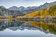 Cool and Crisp (Kirk Lougheed) Tags: california easternsierra inyocounty northlake sierranevada sierras usa unitedstates aspen autumn fall lake landscape mountain mountainside outdoor plant reed reflection snow tree water willow