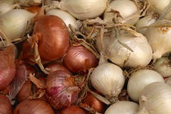 Every kind of onion (I like green) Tags: vegetables fruit produce streetmarket palermo sicily italy food fresh