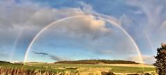Double Rainbow 🌈 (doreen_maclennan) Tags: aftertherain rain potofgold clouds blue sky rainbows rainbow doublerainbow