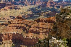 Grand Canyon National Park and Desert View Drive in Arizona-USA (KyotoDreamTrips) Tags: arizona desertviewdrive grandcanyon grandcanyonnationalpark matherpoint usa rimtrail unitedstates us