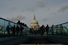_DSC3867.jpg (stevemarleyphoto) Tags: southbank london photowalk england unitedkingdom gb