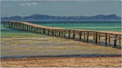 Aludia Beach (Heinze Detlef) Tags: mallorca aludia wasser meer sonne urlaub berge alcudiabeach steg strand sand bucht bergkette himmel