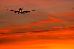 Dreamliner Sunrise Approach To 27R (Shaun Grist) Tags: lhr egll london londonheathrow heathrow sunrise morning 27r boeing 787 dreamliner shaungrist airport aircraft aviation aeroplanes airline avgeek